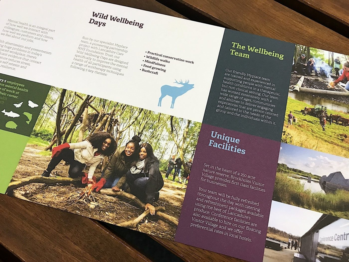 LWT wellbeingdays literature design